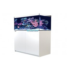 Aquarium et meuble Red Sea Reefer XL 425 Blanc