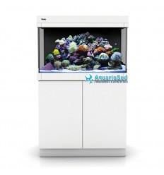 Aquarium et meuble Red Sea Max C-250 Blanc équipé eau de mer : 250L
