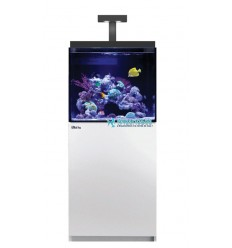 Aquarium et meuble Red Sea Max E 170 LED - Blanc