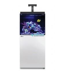 Aquarium et meuble Red Sea Max E 170 LED - Blanc