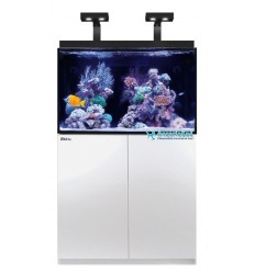 Aquarium et meuble Red Sea Max E 270 LED - Blanc