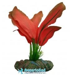 AQUA NOVA Echinodorus rouge - Hauteur 13 cm - NP-13-SP1369