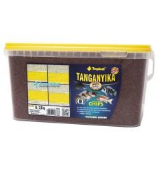 TROPICAL Tanganyika chips en 5 litres pour l'alimentation quotidienne des Cichlidés du lac african Tanganyika