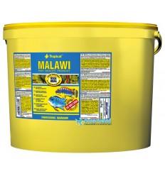 TROPICAL Tanganyika Flakes 11 litres pour l'alimentation quotitienne des Cichlidés Africains du Lac Tanganyika