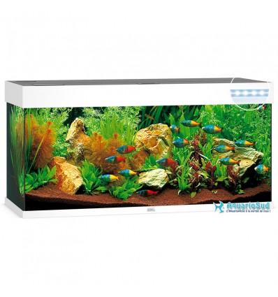 Aquarium JUWEL Rio 240 Led Blanc - 240 Litres