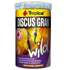 Alimentation pour Discus sauvages et d'élevage : TROPICAL Discus Gran Wild - 5 litres