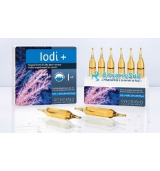PRODIBIO Iodi + 6 ampoules