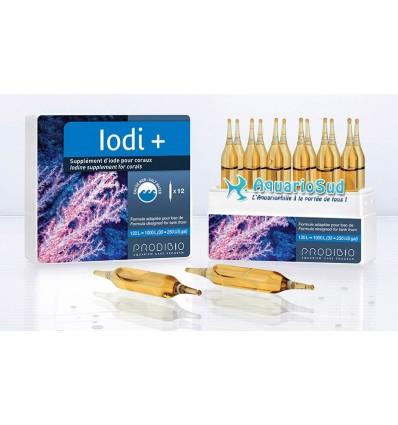 PRODIBIO Iodi + 12 ampoules
