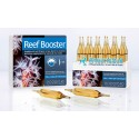 PRODIBIO Reef Booster - 12 ampoules